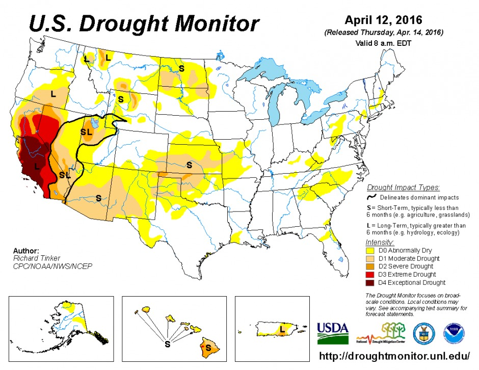 Drought Survival Tips and California Drought